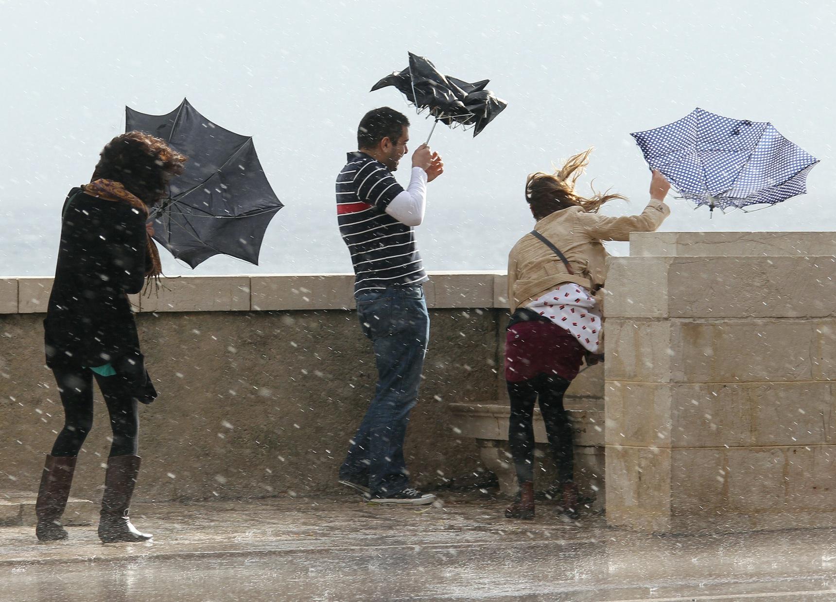 мокши прикольные картинки про сильный ветер радостью